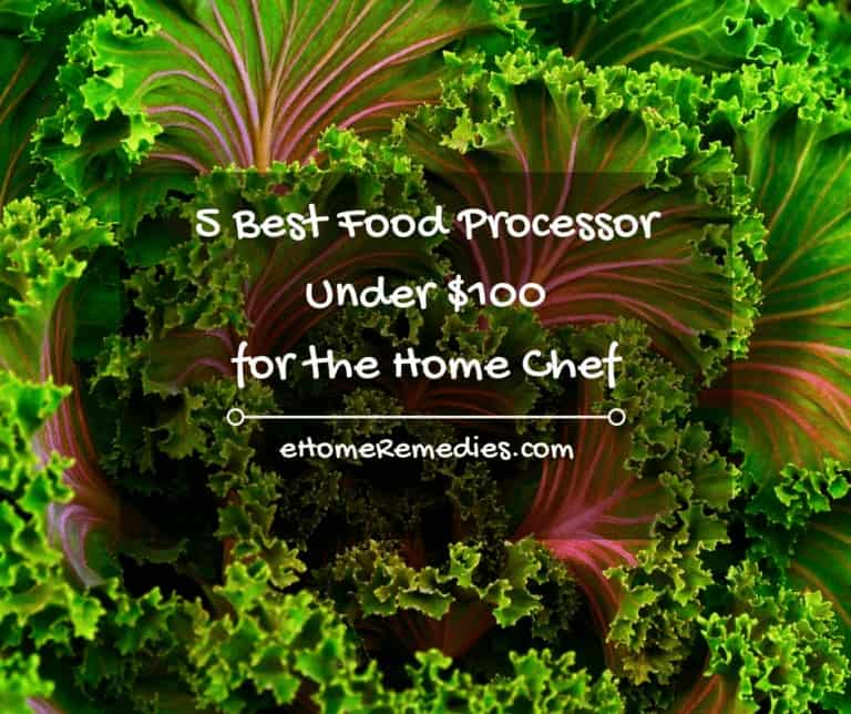 5 Best Food Processor Under $100 for the Home Chef