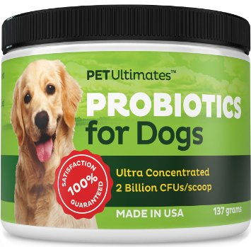 Probiotics-For-Dogs