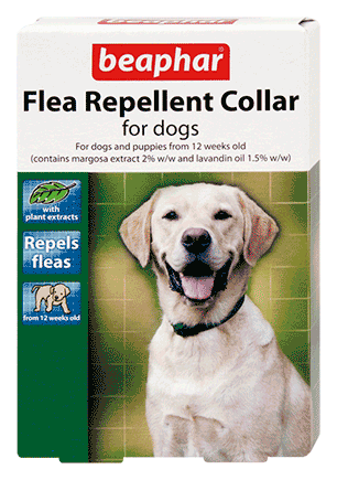 flea repellent collar