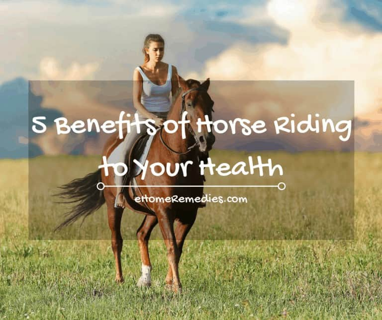 5 benefits of horse riding to your health