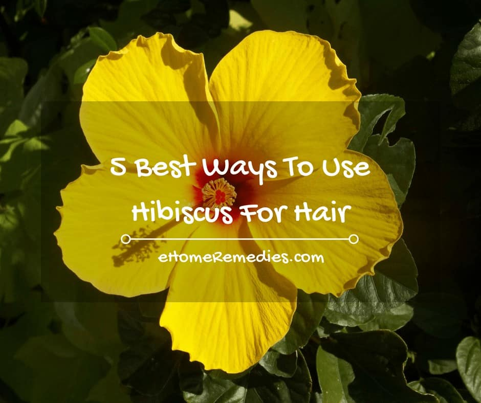 5 Best Ways To Use Hibiscus For Hair