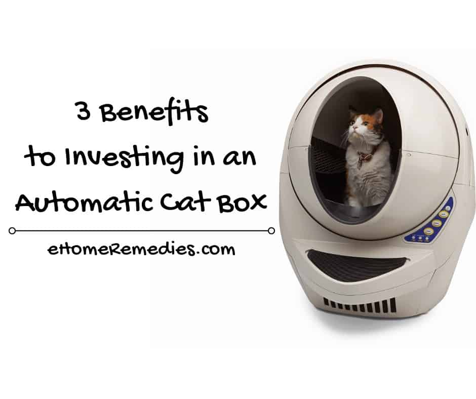 Benefits to Investing in an Automatic Cat Box