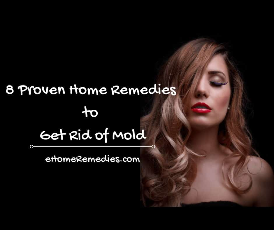 Home Remedies to Get Rid of Mold