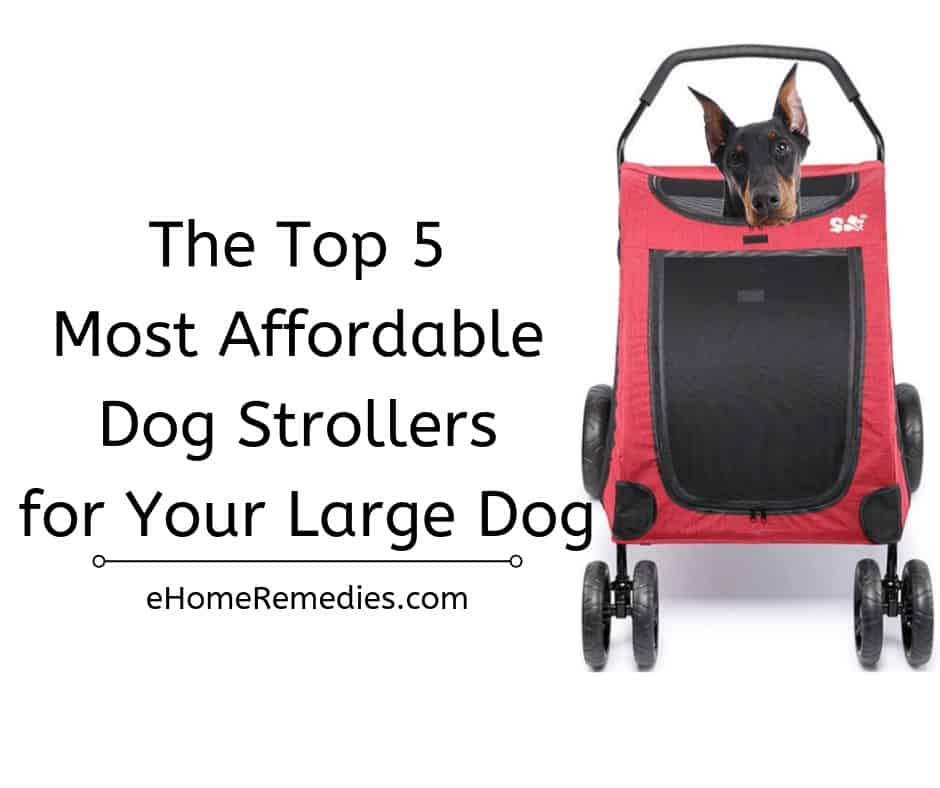 Top 5 Most Affordable Dog Strollers for Your Large Dog