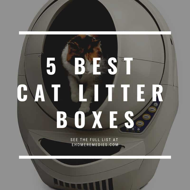 BEST LITTER BOXES for Multiple Cats