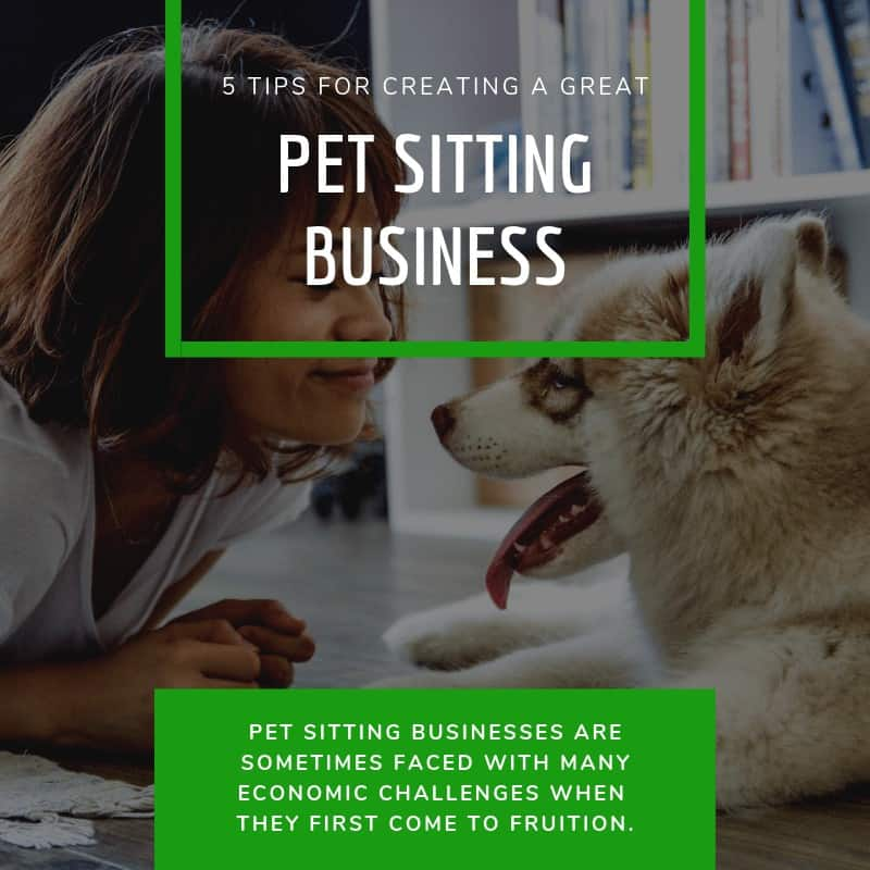 Creating a Great Pet Sitting Business