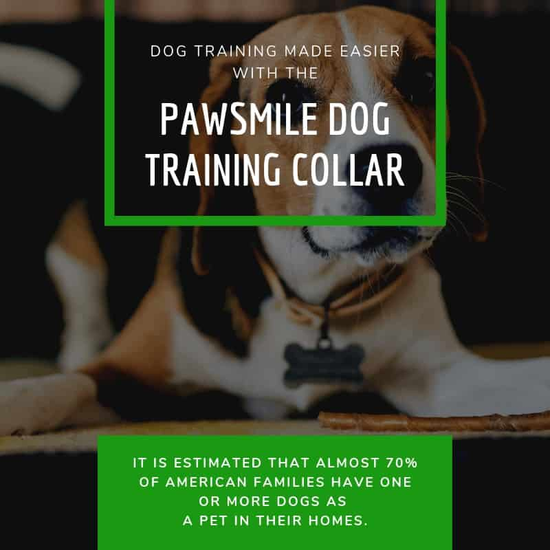 Pawsmile Dog Training Collar