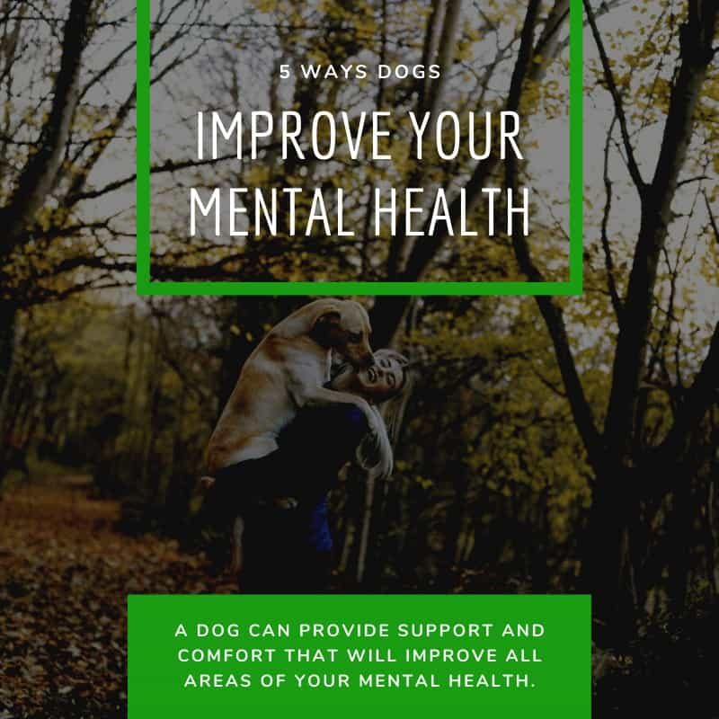 Dogs Improve Your Mental Health