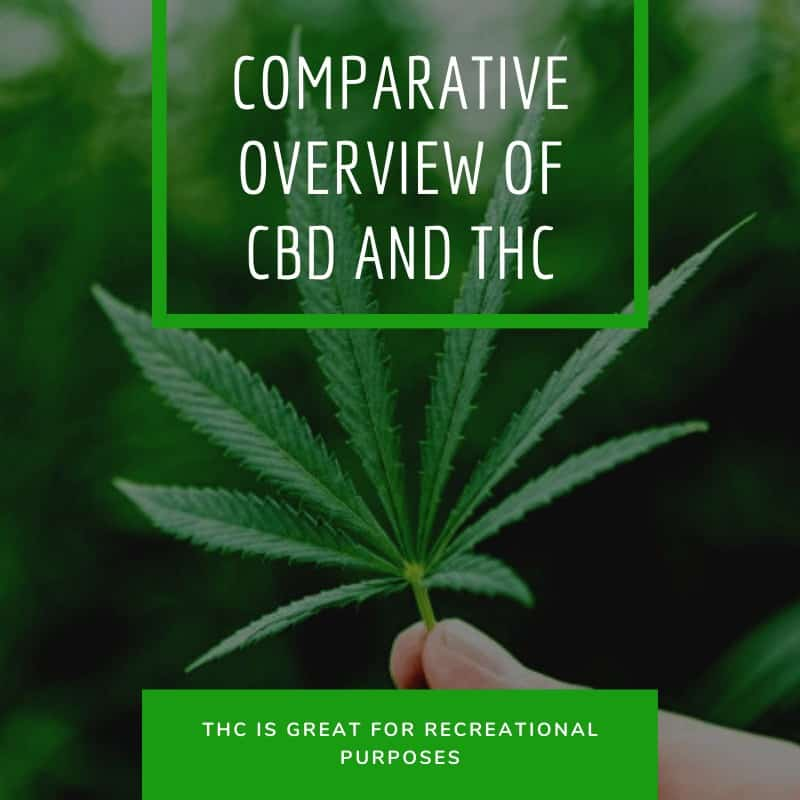 Comparative Overview of CBD and THC Based on Facts