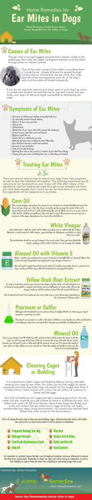 Home Remedies for Ear Mites in Dogs - Infographic
