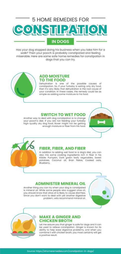 home remedies for constipation Infographic